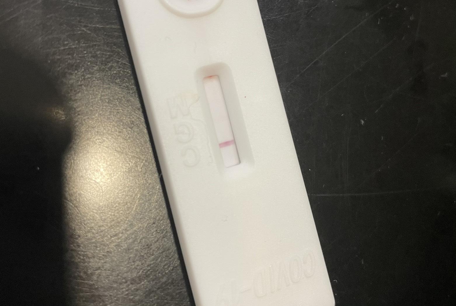 抗体検査の結果