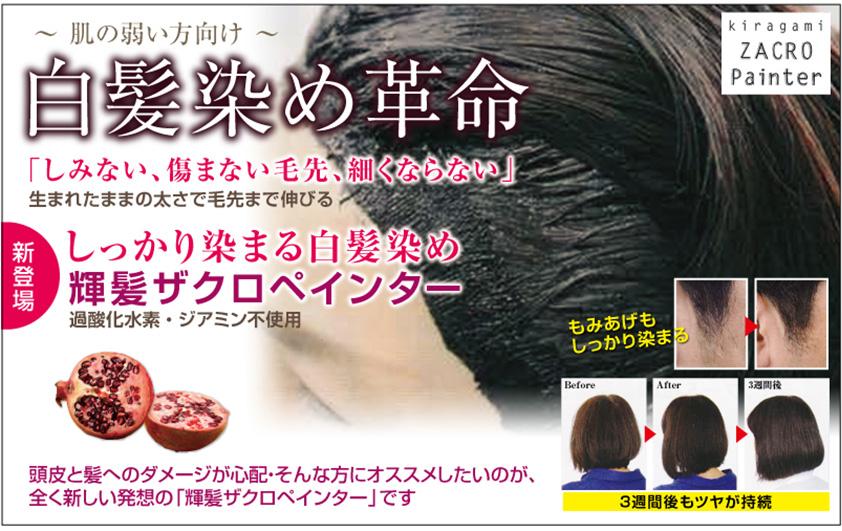 頭皮に優しいヘアカラー『ザクロペインター』
